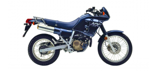 NX250 Dominator (MD21)